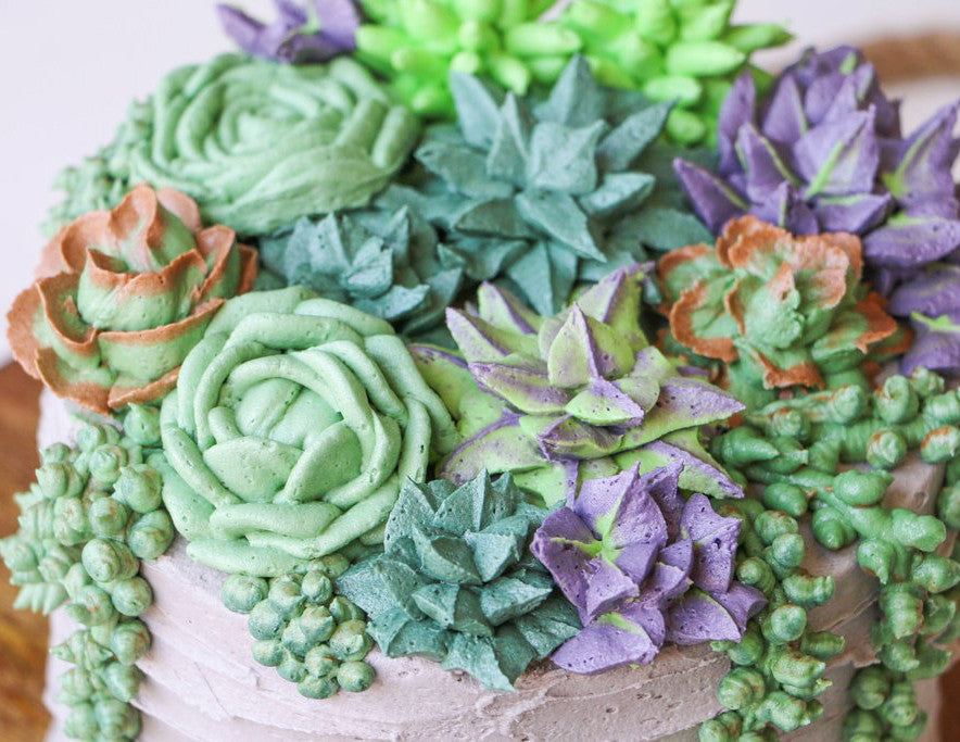 Succulent Cake Workshop