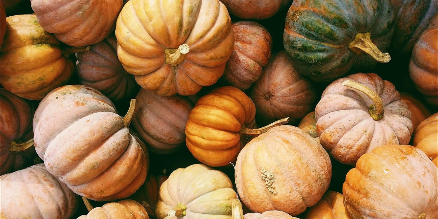 Pinetree Owner Jef's Pumpkin & Squash Puree Recipe
