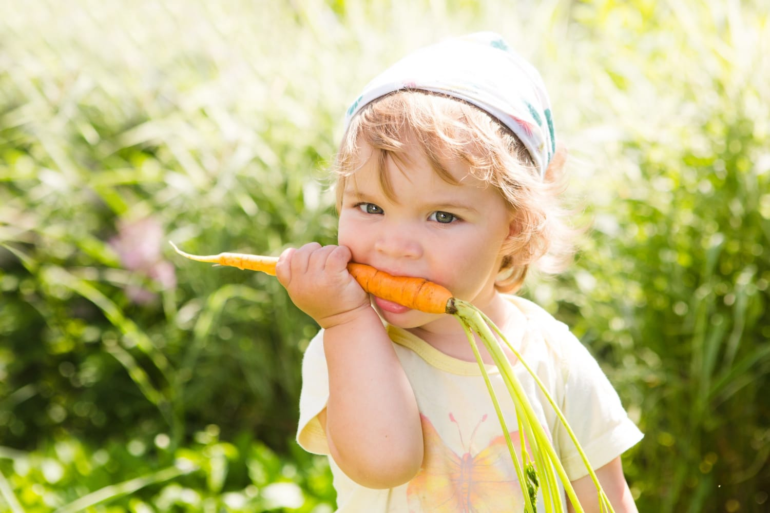 One to Grow On: What to Plant in a Baby Food Garden