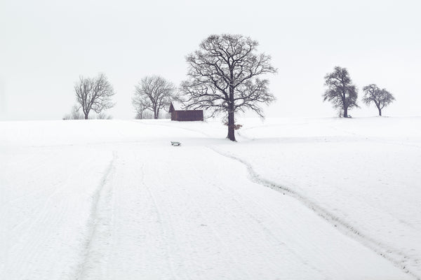 Snow covered landscape with driveway to a barn