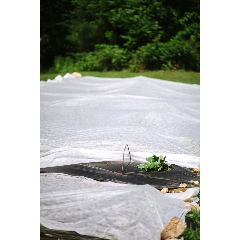 Agrofabric Pro 34 Row Cover 6 X 25 Blanket - Supplies