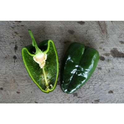Ancho Hot Pepper (Heirloom 80 Days) - Vegetables