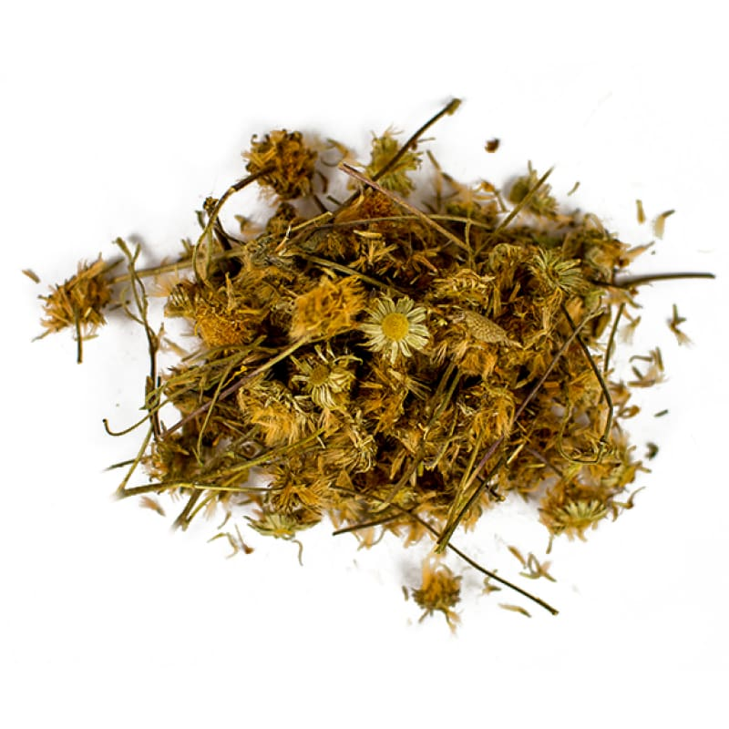 Arnica Flowers (1 Oz) - Crafts