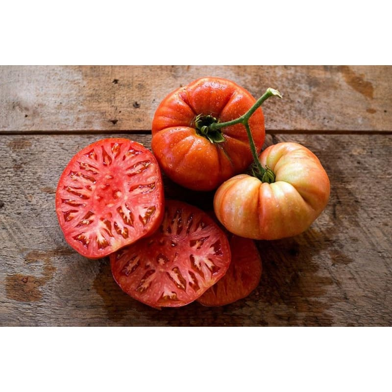 BEEFMASTER TOMATO (F1 hybrid 80 days) **sold out**