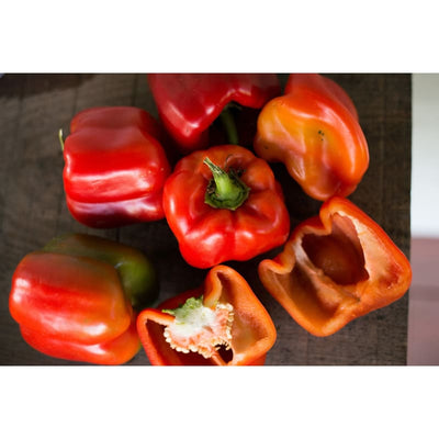 Big Red Pepper (75 Days) - Vegetables