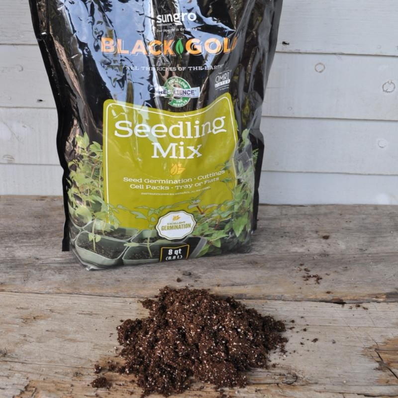 Black Gold Seedling Mix (8 QT)