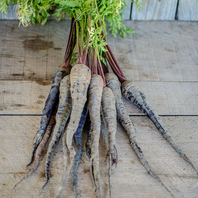 Black Nebula Carrot (70 Days) - Vegetables