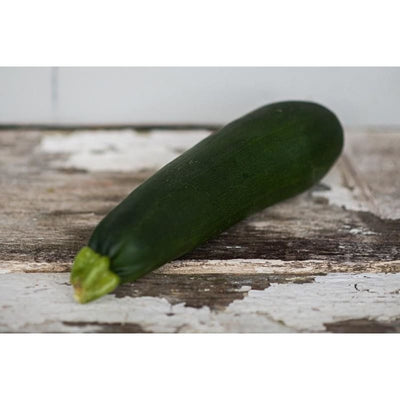 Black Zucchini Summer Squash (Heirloom 50 Days) - Vegetables