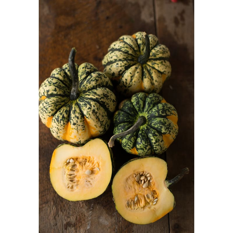 CARNIVAL WINTER SQUASH (F1 hybrid 85 days)