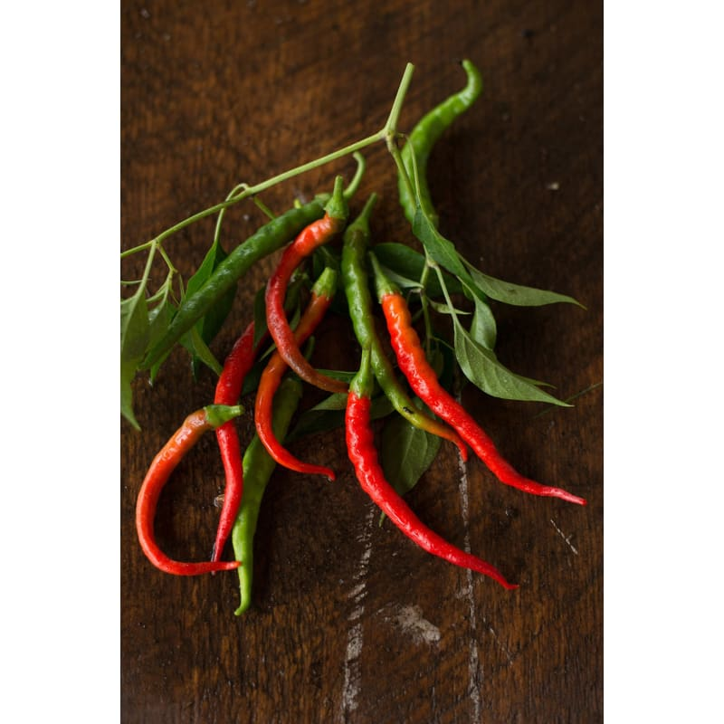Cayenne-Long Pepper (Heirloom, 70 Days)
