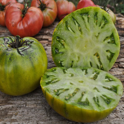 Cherokee Green Tomato (Organic 80 Days) - Vegetables