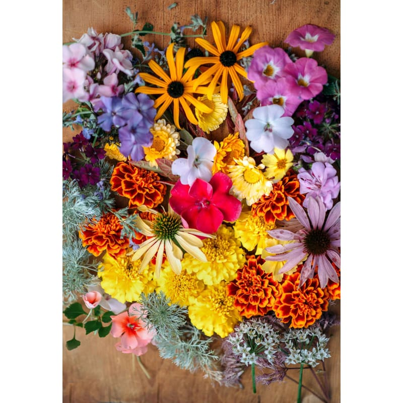 Cottage Flowers Collection - Seed Collections