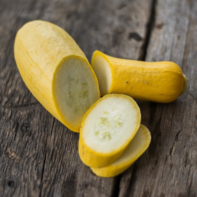 Early Prolific Straightneck Summer Squash (45 Days) - Vegetables