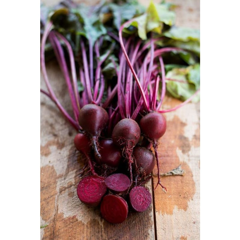 Early Wonder Tall Top Beet Microgreens ( 1 oz )