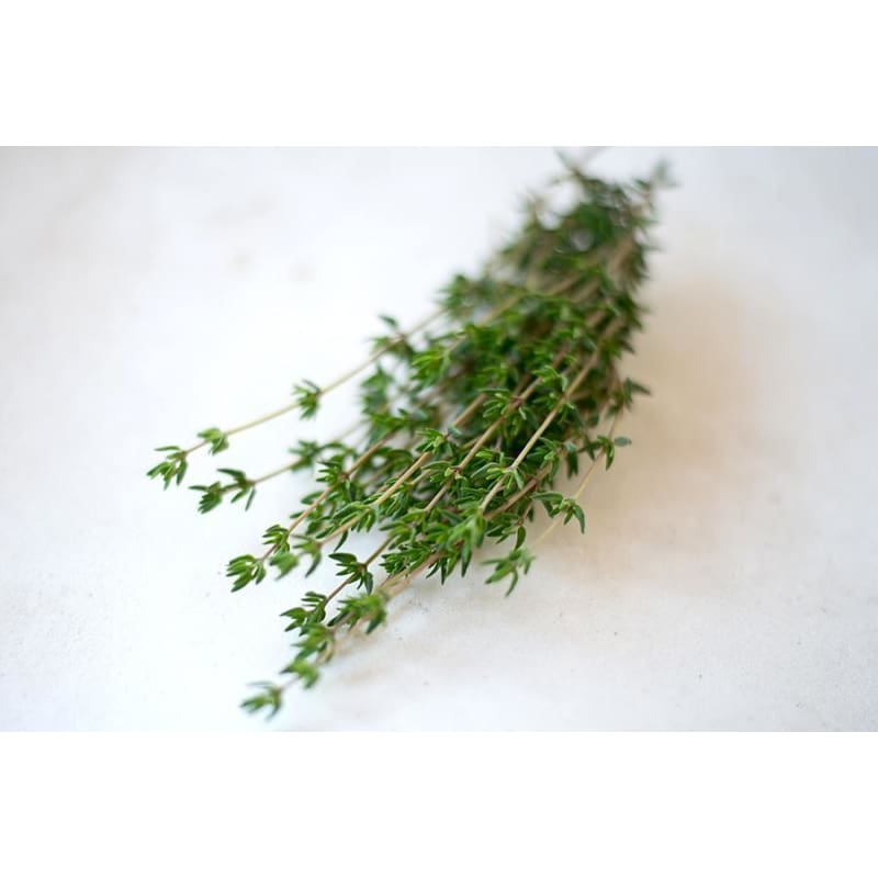 French Thyme - Herbs