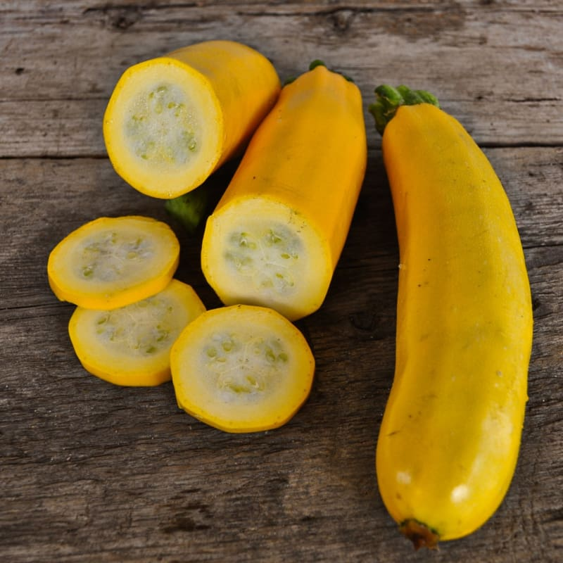 Golden Glory Zucchini (F1 Hybrid 50 Days) - Vegetables
