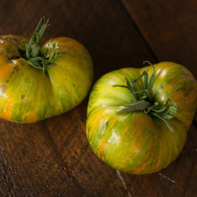Green Berkeley Tie Dye Tomato (Organic 75 Days) - Vegetables