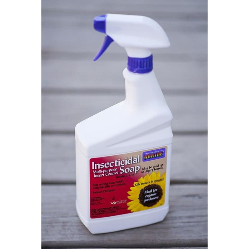 Insecticidal Soap Spray (32 OZ)