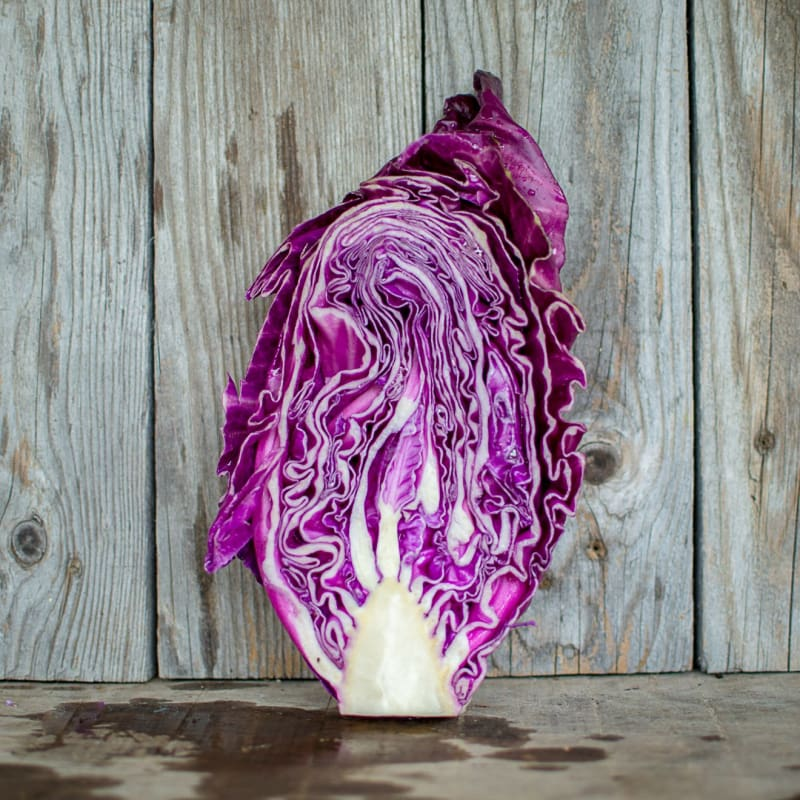 Kalibos Cabbage (Heirloom, 85 Days)
