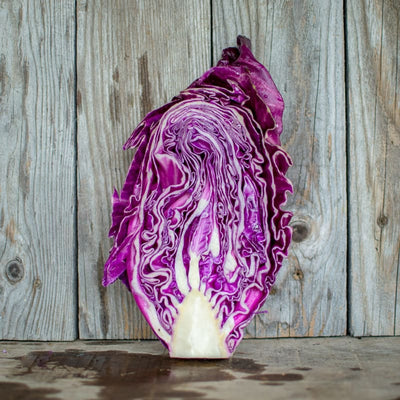 Kalibos Cabbage (Heirloom 85 days) - Vegetables