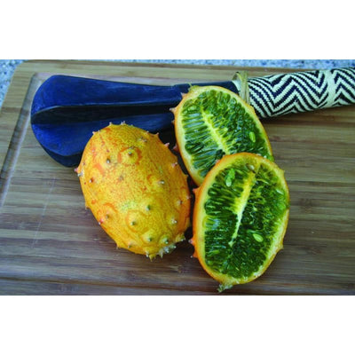 Kiwano Horned Melon (90 Days) - Vegetables