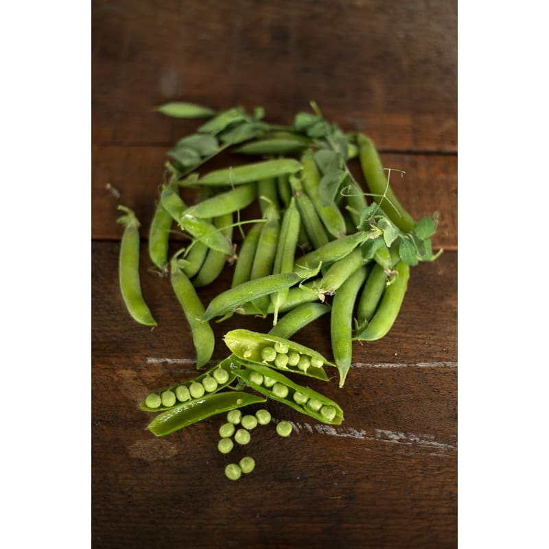 Lincoln Pea (Heirloom 65 Days) - Vegetables