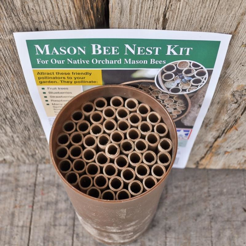 Mason Bee Nest Kit (Standard)