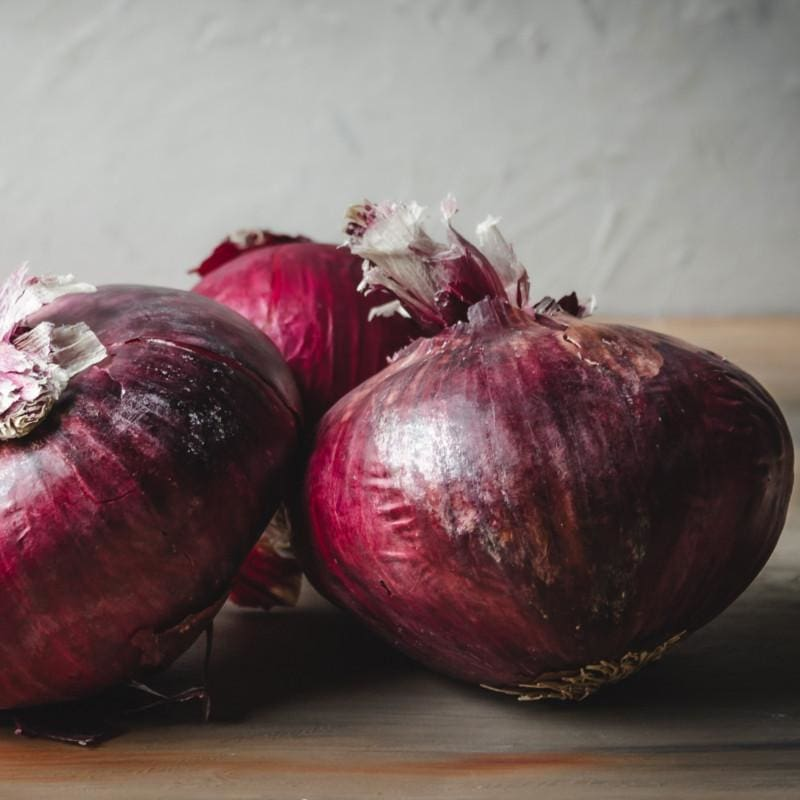 Onion Plants 'Red Burgundy'