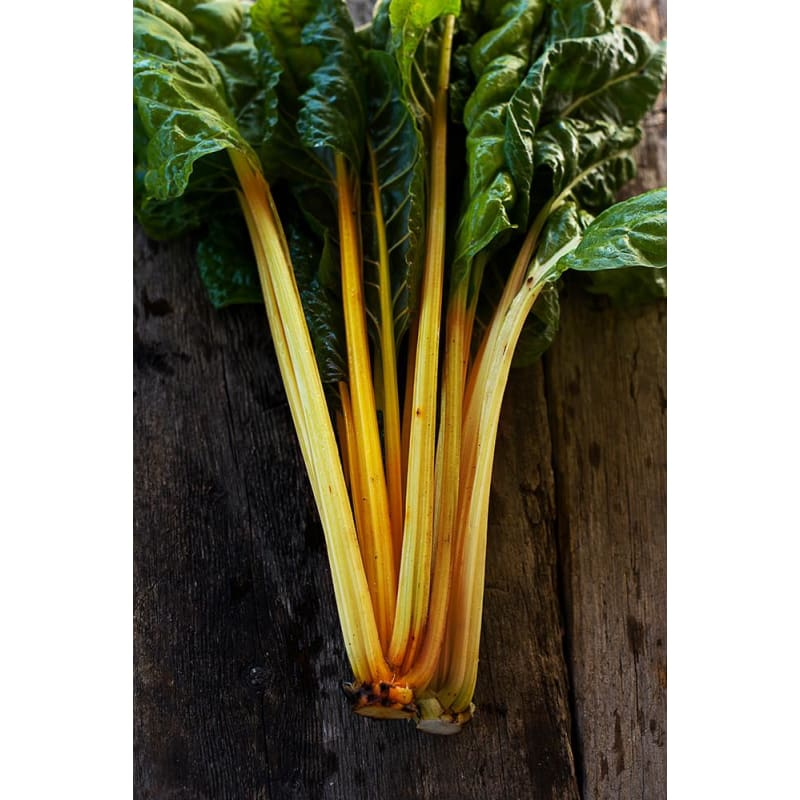Orange Fantasia Swiss Chard (59 Days) - Vegetables