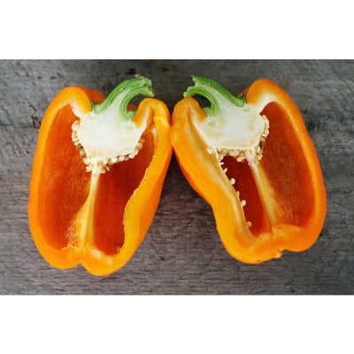 Orange Sun Pepper (81 Days) - Vegetables