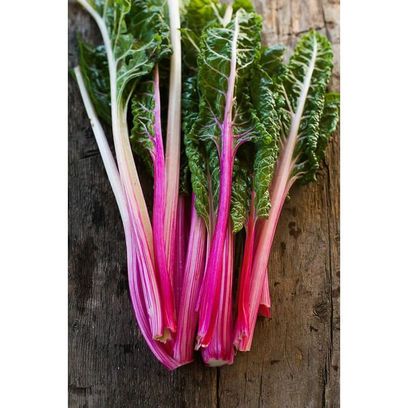 Peppermint Swiss Chard (60 Days) - Vegetables