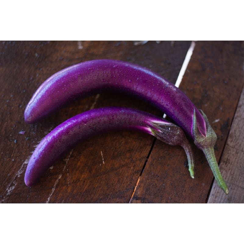 Pingtung Long Eggplant (Heirloom 66 Days) - Vegetables