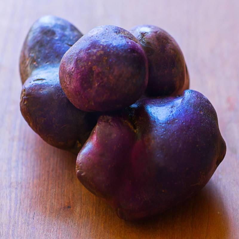 Potato 'Adirondack Blue'