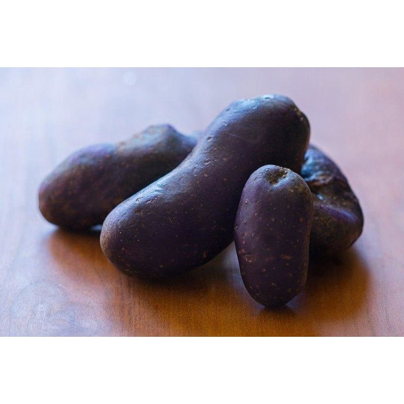 POTATO FINGERLING 'MAGIC MOLLY' ORGANIC (SOLD OUT)