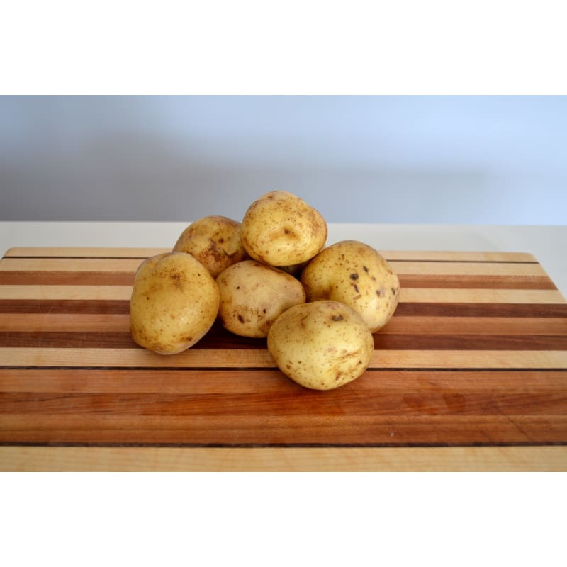 POTATO 'KING HARRY' ORGANIC (SOLD OUT)