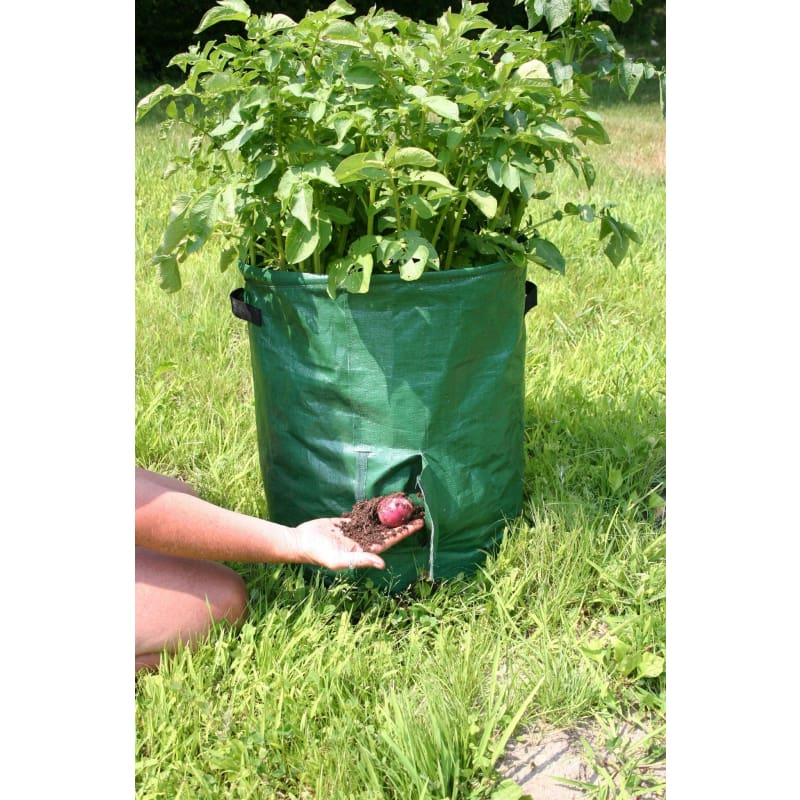 Potato Tubs (Package Of 2) - Supplies