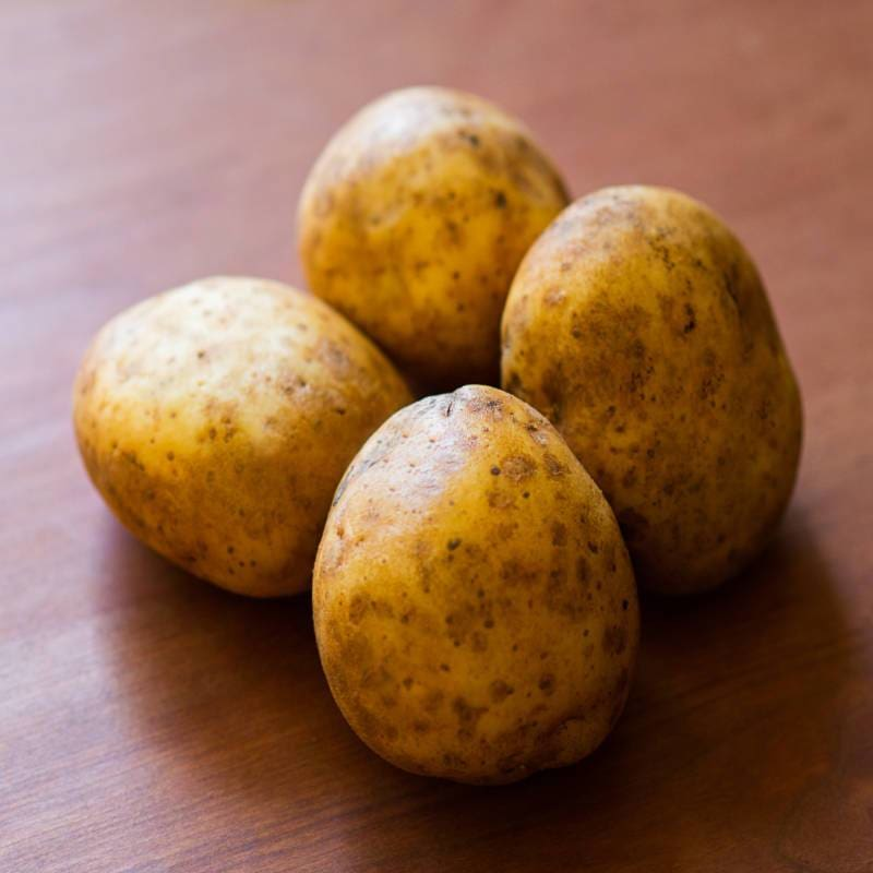Potato 'Yukon Gold'