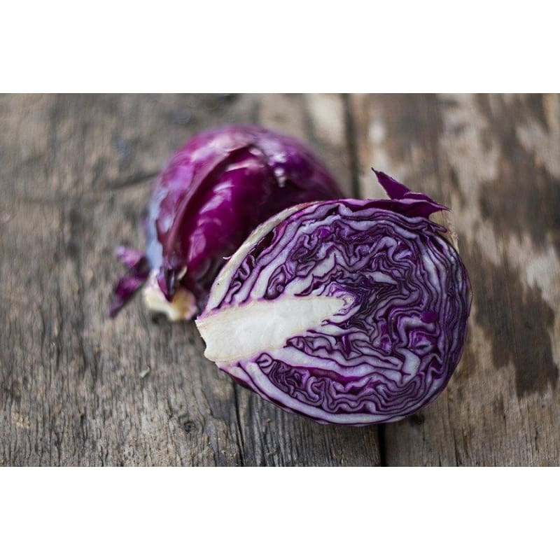 Primero Cabbage (F1 Hybrid 72 Days) - Vegetables