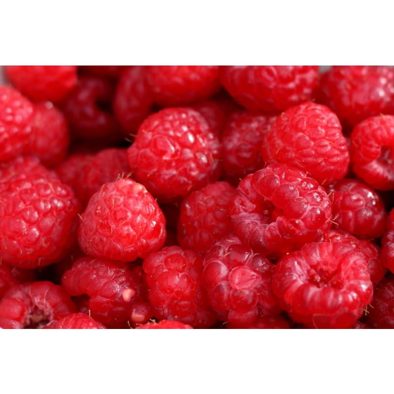 Raspberry Fragrant Oil (1/8 Oz) - Soapmaking Supplies