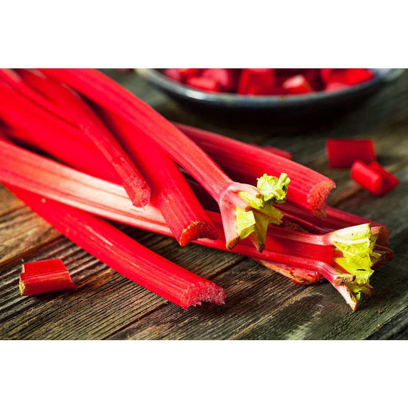RHUBARB CRIMSON CHERRY (SOLD OUT) - Spring