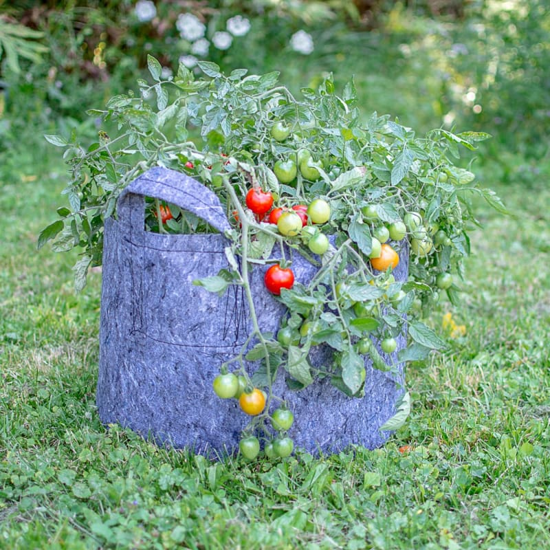 Root Pouch 15 Gallon With Handles - Supplies