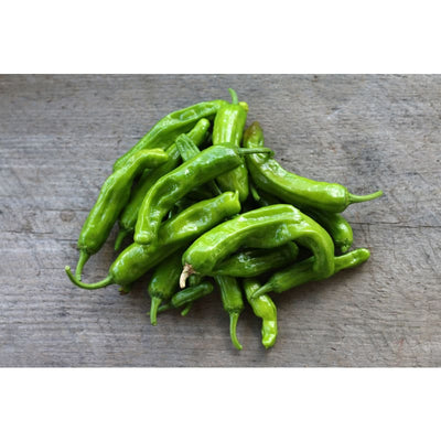Shishito Pepper (60 Days) - Vegetables