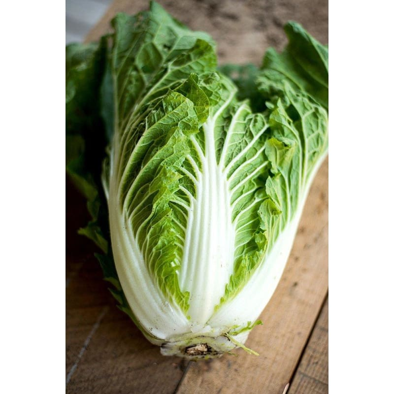 Soloist Chinese Cabbage (F1 Hybrid 49 days) - Vegetables