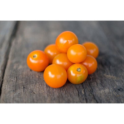 Sungold Tomato (F1 Hybrid 60 Days) - Vegetables