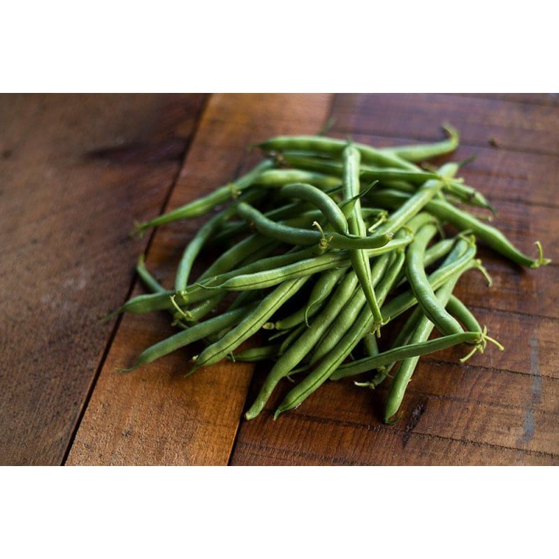 Tendergreen Improved Bush Bean (Heirloom, 53 Days)