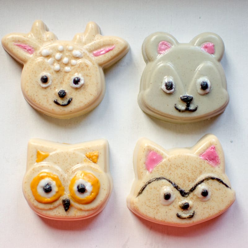 Woodland Animal Faces Mold