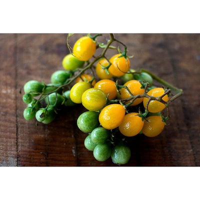 Yellow Currant Tomato (75 Days)-Discontinued - Vegetables