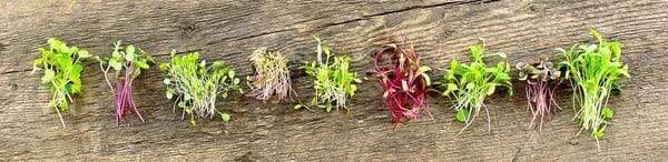 piles of microgreens on a wooden board