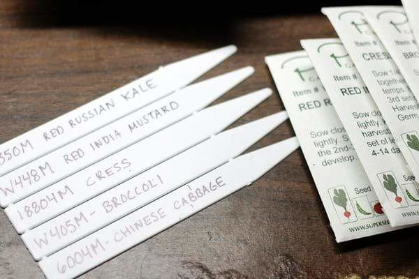 Plastic seed labels and seed packets on a table