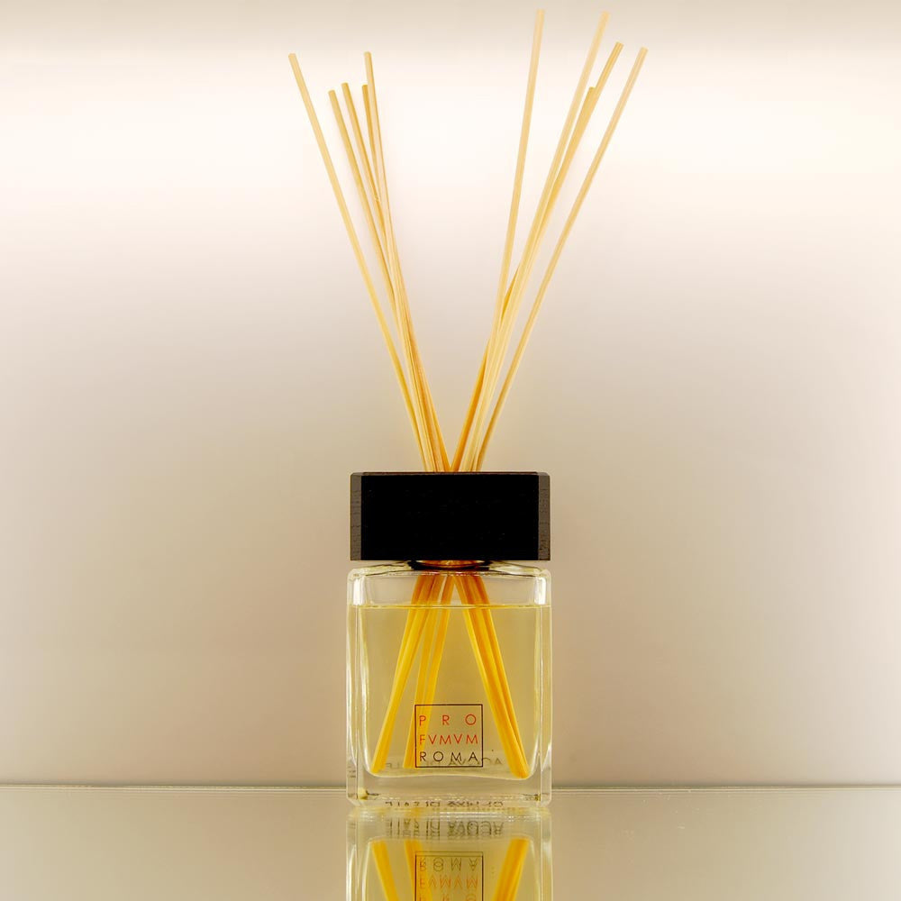 TERRA Room Diffuser by vendor Profumum Roma